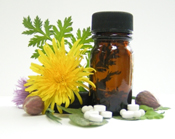 Homeopathy & Homeopathic Medicine in Margate Florida