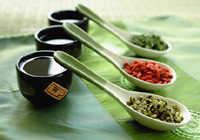 Chinese Herbs, Chinese Herbalist in Margate Florida
