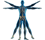 Chiropractor serving the residents of Margate Florida for over 15 years